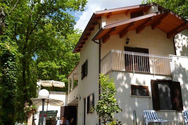 Blick auf dei Villa Tiglio