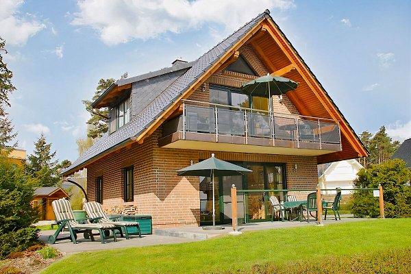 Ferienhaus E.G mit Terrasse