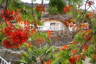 Finca La Palma - Gran Canaria
