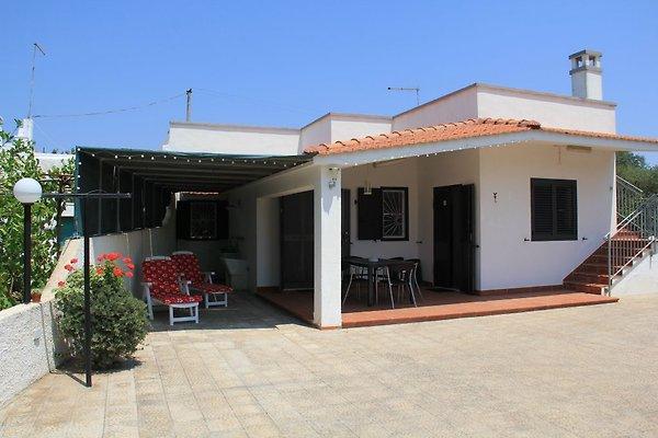 Ferienhaus CASA PRIMAVERA