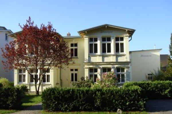 Bernsteinkammer à Zempin - Image 1