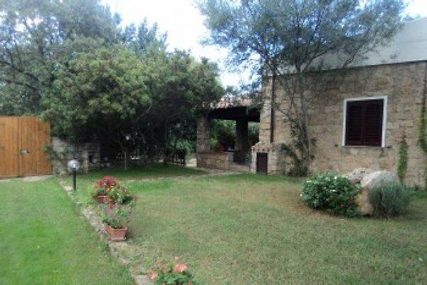 Ferienwohnung Bungalows Pedras in Santa Maria Navarrese - Bild 1