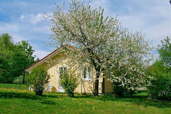 Ferienhäuser Postmünster  in Postmünster - immagine 1
