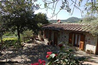 Casa Carmen en un entorno verde aislado