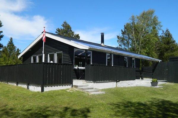 Römö - Nordsee à Rømø - Image 1