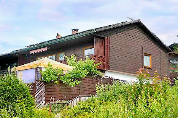 Ferienhaus Karin in Haus im Wald - immagine 1