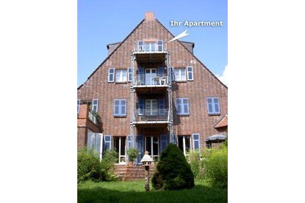 Ferienwohnung Köpenick  Apelt in Friedrichshagen - Bild 1