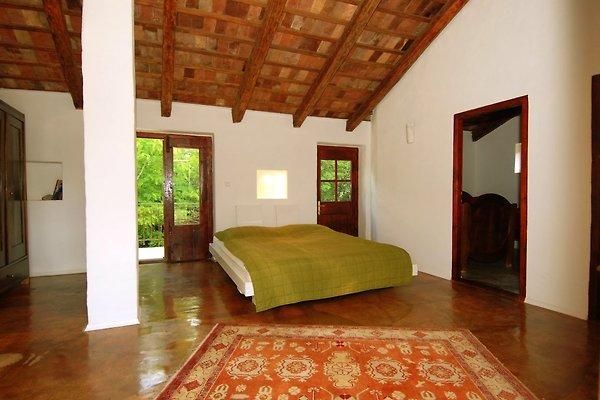 Cottage Stancija Mani - Casa de oliva en Rovinj - imágen 1