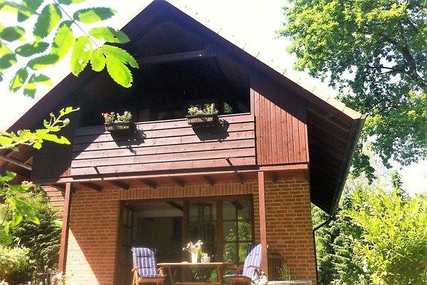 Rückansicht des Hauses mit unverbautem Waldblick