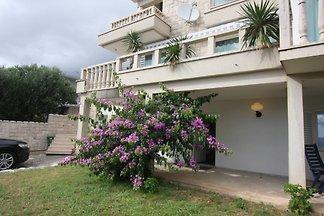 Villa Ruzmarin mit Pool ***