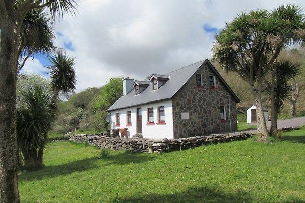 Cottage von Palmen aus