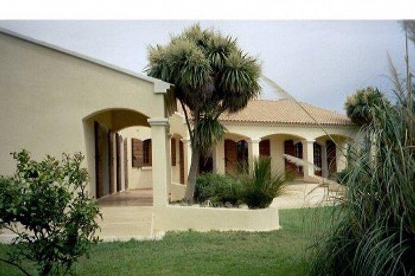 Holiday Villa vicino alla spiaggia in Moriani-Plage - immagine 1