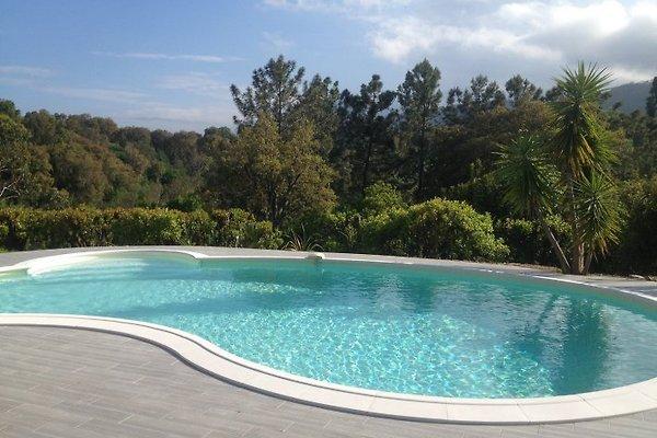 Ferienvilla mit Pool  in Moriani-Plage - Bild 1