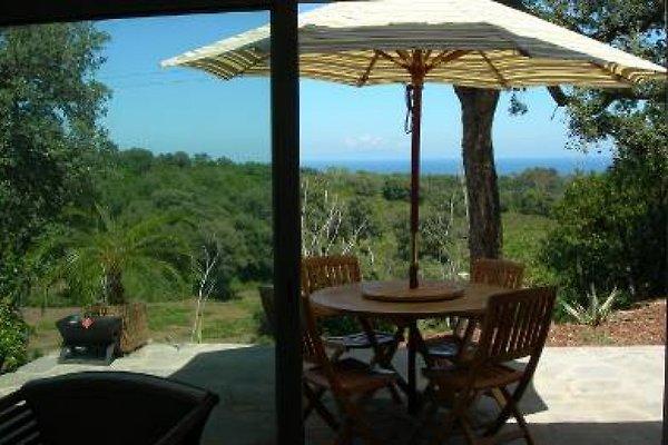 Maison avec vue sur la mer à Moriani-Plage - Image 1