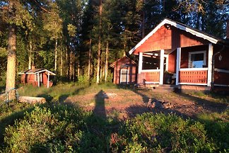 Traumhuette Gaensen See - Dalarna