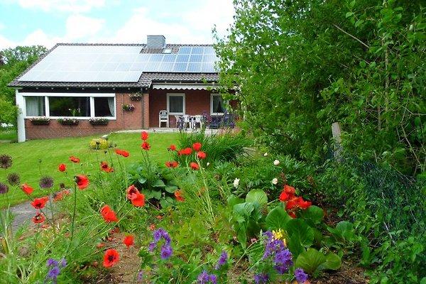 Ferienhaus Tilling en Hohwacht - imágen 1