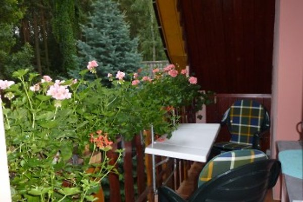 Ferienwohnung Porst à Neuruppin - Image 1