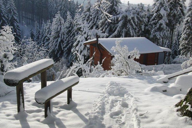 Winter an der Farnberghütte