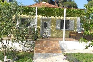 Pinien Ferienhaus Sukošan-Dalmatien