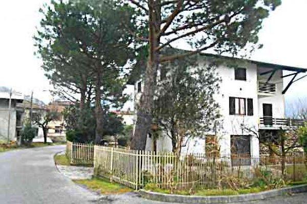 Pina bilo su Mezzolasee / Lago di Como in Dascio - immagine 1
