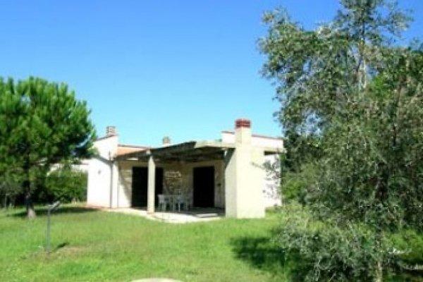 Villa Albanella mit Garten