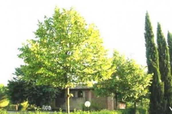 Fienile Avanella avec piscine - Chianti à San Gimignano - Image 1
