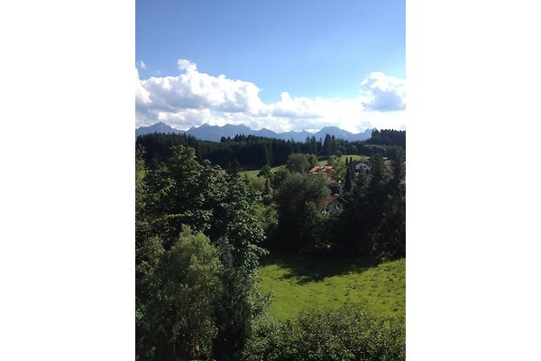Blick vom Süd-West-Balkon