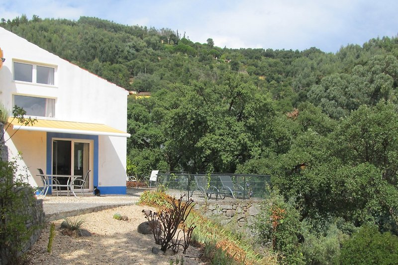 Casa Horta Velha Neues Haus