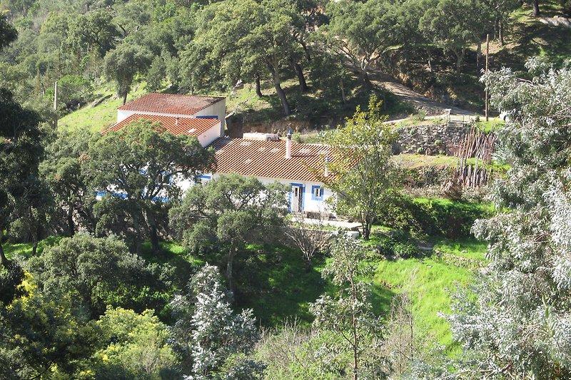 Casa Horta Velha Altes Haus