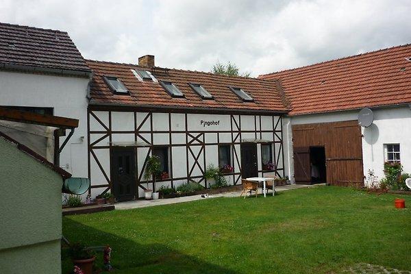 Ferienhaus Lausitzer Seenland à Neupetershain - Image 1