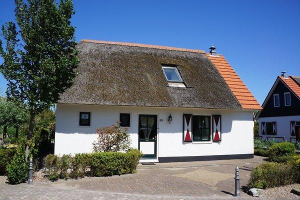 Buitenplaats Callantsoog in Callantsoog - Bild 1