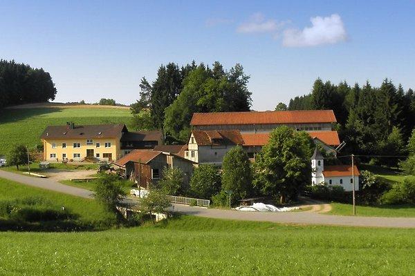 Ansicht vom Familienbauernhof Fingermühl im Bayerischen Wald