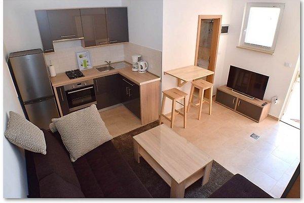 APPARTEMENTS Appartements Gavran-STUDIO à Pula - Image 1