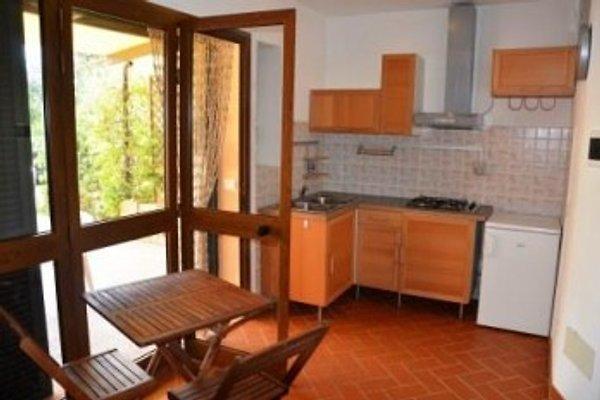 Apartments_Capoliveri/Lacona in Lacona - immagine 1