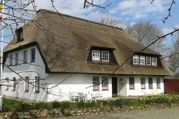 Landhaus am Mühlendeich en Vollerwiek - imágen 1
