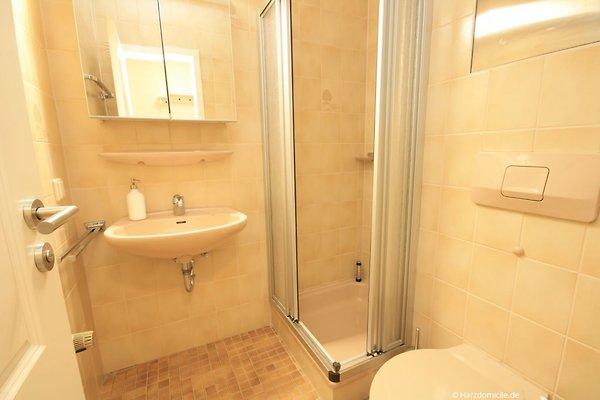 fewo bergkristall mit sauna ferienwohnung in braunlage mieten. Black Bedroom Furniture Sets. Home Design Ideas