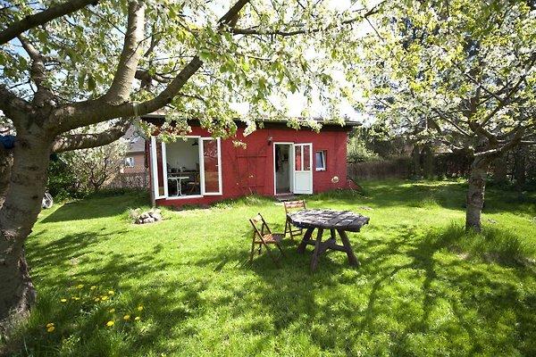 Rotes Haus Vielitz