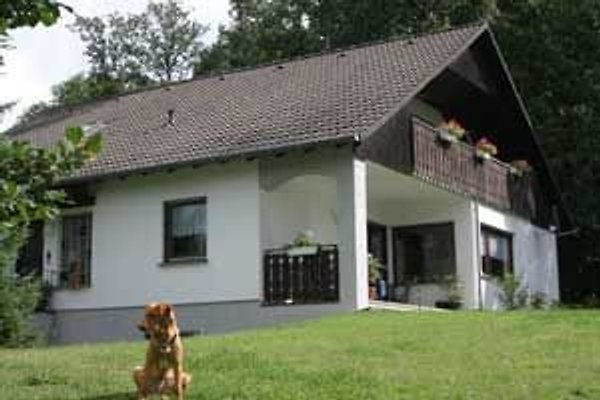 Ferien mit Hund en Emmelshausen - imágen 1