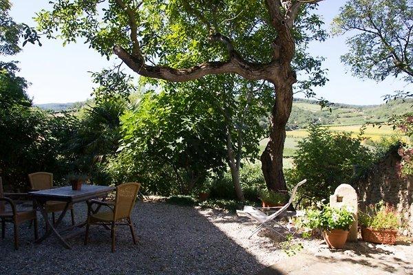 San Rocco 3 in Villelongue-d'Aude - immagine 1