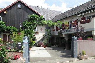 FERIENWOHNUNG 3***  im Elsaß