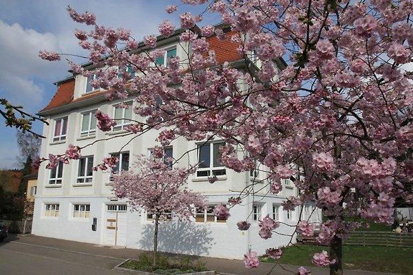 Ferien-Loft-Zollern-Alb à Onstmettingen - Image 1