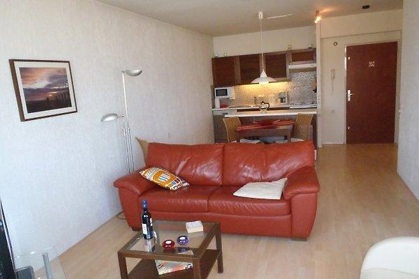 Appartement Sterflat 261 **** in Egmond aan Zee - Bild 1