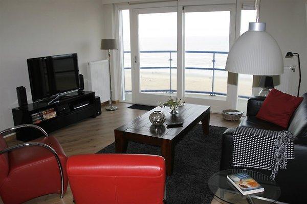 Appartement Atlantis 19a ***** in Egmond aan Zee - Bild 1