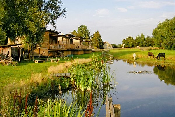 Horse Lake Ranch à Neuendorf - Image 1
