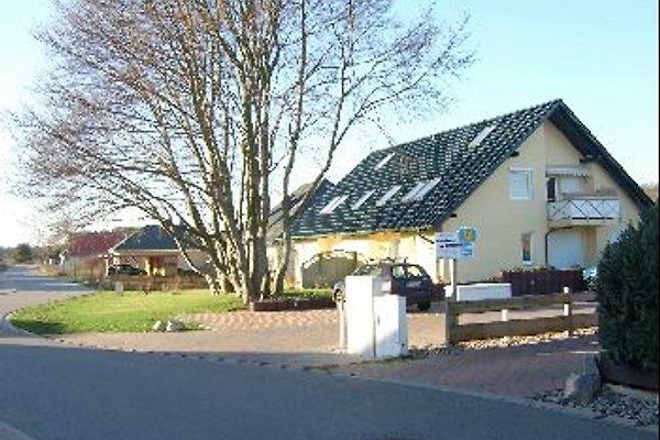 Ferienwohnung Mero à Zempin - Image 1