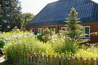 Detached small house on the Baltic Sea