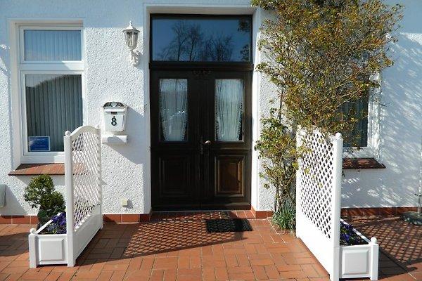 Accueil Villa Verde Blankenstein  à Norderney - Image 1