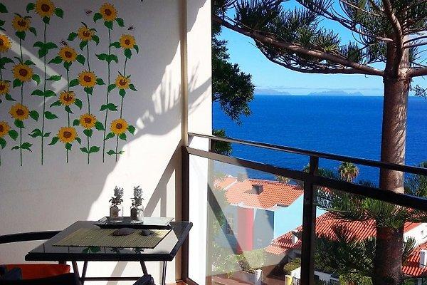 Sunrise Studio de vacances  à Caniço de Baixo - Image 1