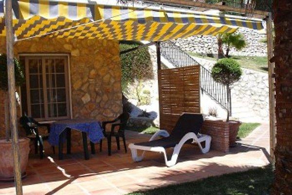 Villa la Jamisa en Mijas -  1