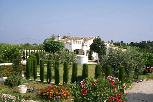 Der Finca-Garden mit seinem herrlichen Garten